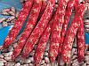Стрегонта семена фасоли овощной Euroseed 500 г