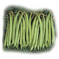 Нагано семена фасоли спаржевой Nunhems 10 000 семян