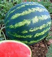 Бонта F1 насіння кавуна типу Крімсон Світ Seminis 1 000 насінин
