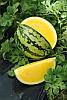 Голден Грейс F1 насіння жовтого кавуна Міkаdо Kyowa 100 насінин