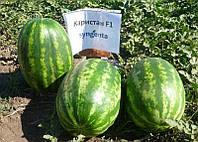 Карістан F1 насіння кавуна Syngenta 1 000 насінин