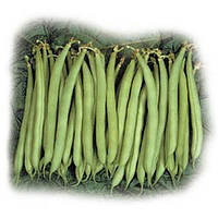 Нагано семена фасоли спаржевой Nunhems 5 000 семян