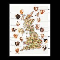 Набор для вышивки крестом 2015 Черная уэльская горная овца.  Black Welsh Mountain (Теа Гувернер)