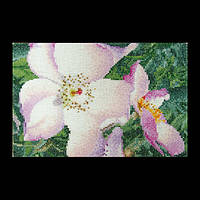 Набор для вышивки крестом № 425А Роза Нью Фейс. Rose New Face (Теа Гувернер)