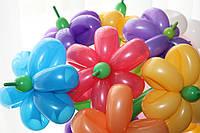 Букет из воздушных шаров ШДМ