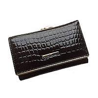 Женский кожаный кошелек dr. Bond. Лаковый кожаный кошелек. Синий и черный. Модный