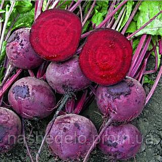 Семена свеклы Зепо F1 25000 сем. калибр 2,75-3,50 прайм. Rijk Zwaan