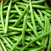 Семена фасоли спаржевой Кларон 100 сем. Садыба Центр