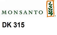 Семена кукурузы Монсанто ДК 315 (Dekalb) ФАО 310