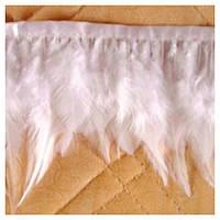 Тесьма из перьев петуха, белая
