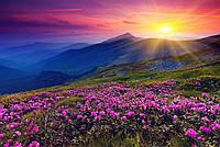 """Бесшовные фотообои """"Рассвет над Альпами"""" 435х300 см"""