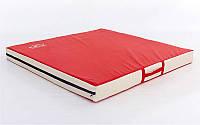 Мат спортивный PVC 1x1м x10см UR LV-1810 Лев (наполнитель-поролон, на молнии, цвет в ассортименте)