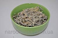 Сушеница болотная трава, 50 г