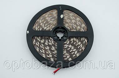 LED лента теплая белая SMD 5050 60д/м (5 м) негерметичная