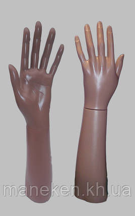 Манекен рука женская предплечье левое до локтя, фото 2