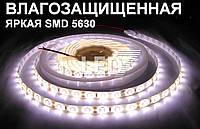 Влагозащищенная светодиодная лента 5630 натуральный белый, 60 д/м
