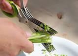 Ножницы для нарезки зелени с 10 лезвиями 20 см, фото 2