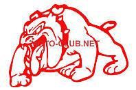 """Наклейка на мототехнику   декор   """"DOG""""   (12x9cм, сине-красная, левая)"""