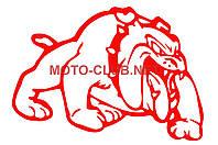 """Наклейка на мототехнику   декор   """"DOG""""   (12x9cм, сине-красная, правая)"""