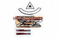 Наклейки на мототехнику (набор)   Honda LEAD 90   (22х10см)   (#2461)