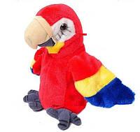 Говорящий попугай повторуха, CL1192A
