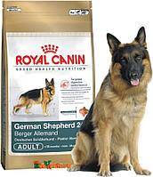Сухой корм для собак Royal Canin German Shepherd-24 от 15 мес. 12 кг