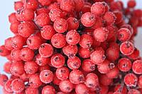 """Сахарные ягодки (калина в сахаре),  38-40 шт/уп. цвета """"сицилийский апельсин"""", фото 1"""