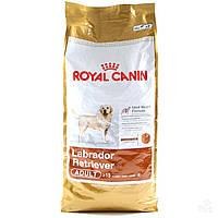 Сухой корм для собак Royal Canin Labrador Adult от 15 мес. 12 кг