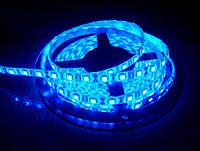 Светодиодная лента LED 5050 B, герметичная лед лента IP65, светодиодная лента синего цвета