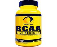 BCAA Repair Recovery 240 caps