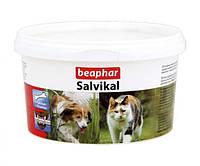 Beaphar Salvikal витаминно-минеральная добавка для собак