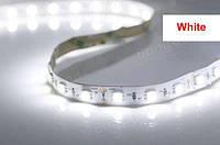 Светодиодная лента комплект 2835 5m White complect, led лента светодиодная белая