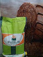 Семена подсолнечника ЕС ПЕТУНИЯ Устойчив к шести расам заразихи А-F, Евралис Семанс