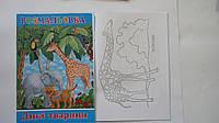 """Развивающая раскраска """"Дикие Животные"""",А4,8рис детская.Раскраски обучающие.Раскраски развивающие,обучающие."""