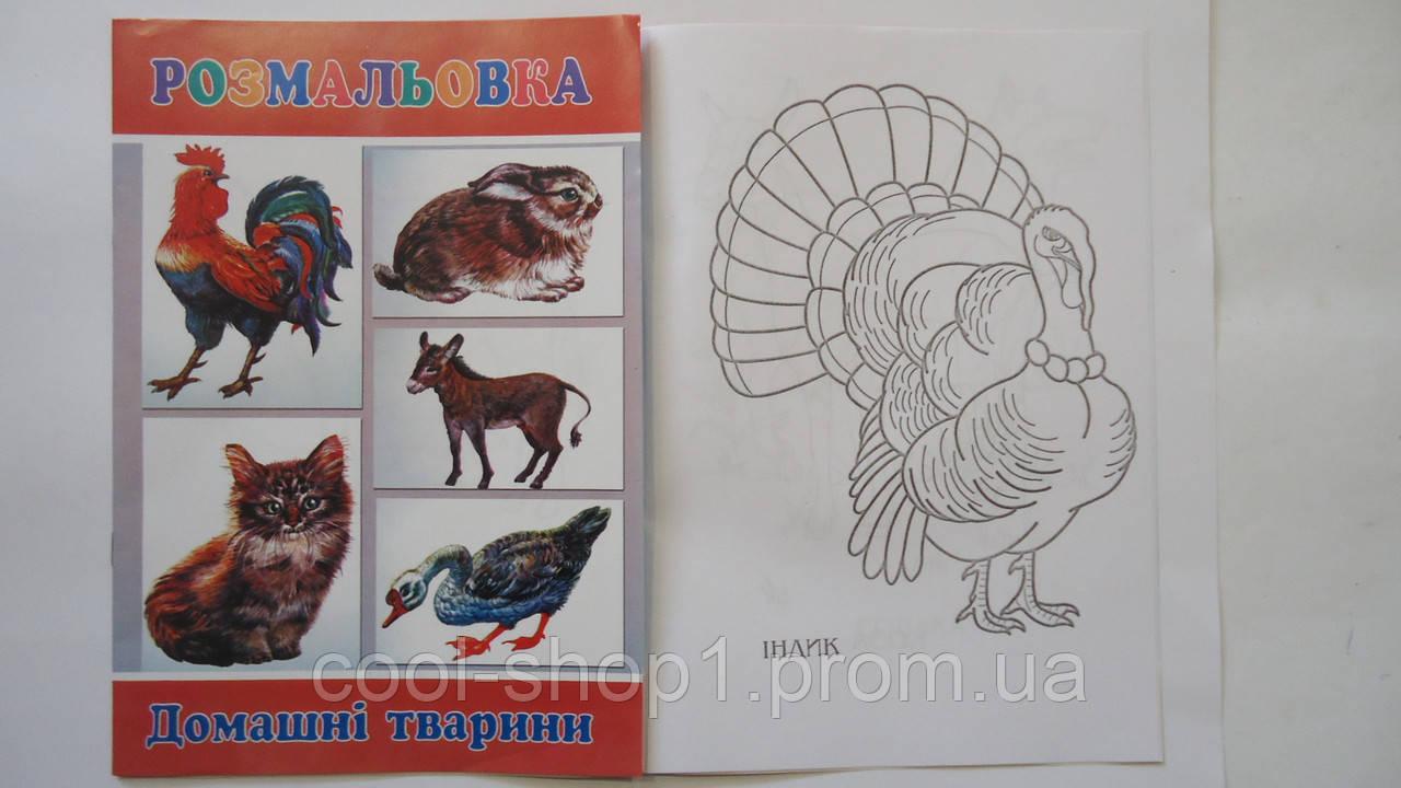 развивающая раскраска домашние животные а4 8рис детская раскраски обучающие раскраски