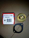 Термостат Форд, фото 3