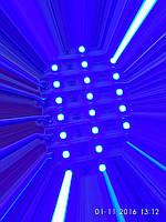 Модуль светодиодный SMD5050 3 led HR синий