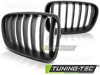 Решетка радиатора ноздри тюнинг BMW X3 F25 мат
