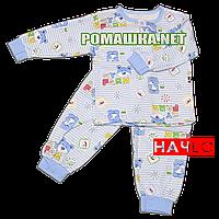 Детская байковая пижама с начесом р. 98 ткань ФУТЕР 100% хлопок ТМ Алекс 3487 А Голубой