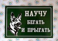 Табличка Осторожно, злая собака. Научу бегать и прыгать. Зеленый