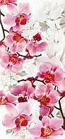 """Бумажные фотообои """"Орхидеи"""" 96х207 см"""