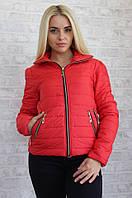 Красная курточка со змейками, на синтепоне Арт-8952/76