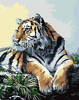 """Живопись по номерам на холсте Идейка """"Тигр"""" (KHO2460) 40 х 50 см (без коробки)"""