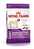 Роял Канин для щенков с высокими энергетич. потребн. от 8 до 18/24 мес.(Royal Canin GIANT Junior ACTIVE) 15кг