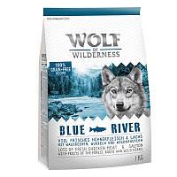 Wolf of Wilderness Blue River - лосось 4кг