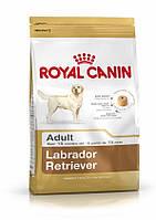 Royal Canin Labrador Retriever Adult 12 кг - Корм для Лабрадоров от 15 мес