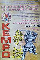 """Открытый чемпионат """"Кэмпо"""" в Харькове, 30 октября 2016 года"""