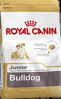 Royal Canin Bulldog Juniot 3 кг - Роял Канин длященков Английского бульдога до 12 мес.