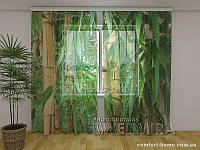 ФотоТюль Бамбуковый лес