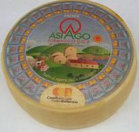 Сыр  Asiago Fresco Formaggio DOP